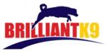 go to Brilliantk9