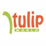 go to Tulip World