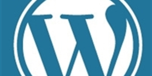 5 Ways to Use WordPress