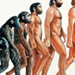 The Top 5 Most Amazing Evolutionary Adaptions