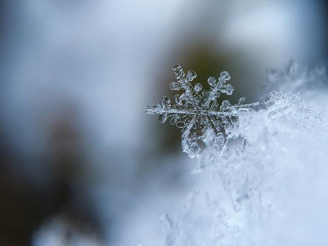 winter ales snow day
