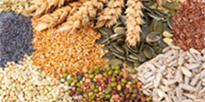 A Granular Look at the Most Healthy Grains