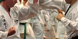 These Are Most Popular Martial Arts Throughout Human History