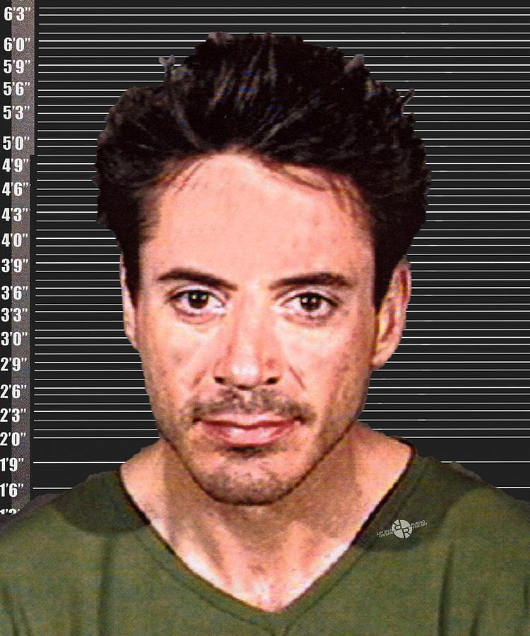 celebrity mug shots Robert Downey Jr