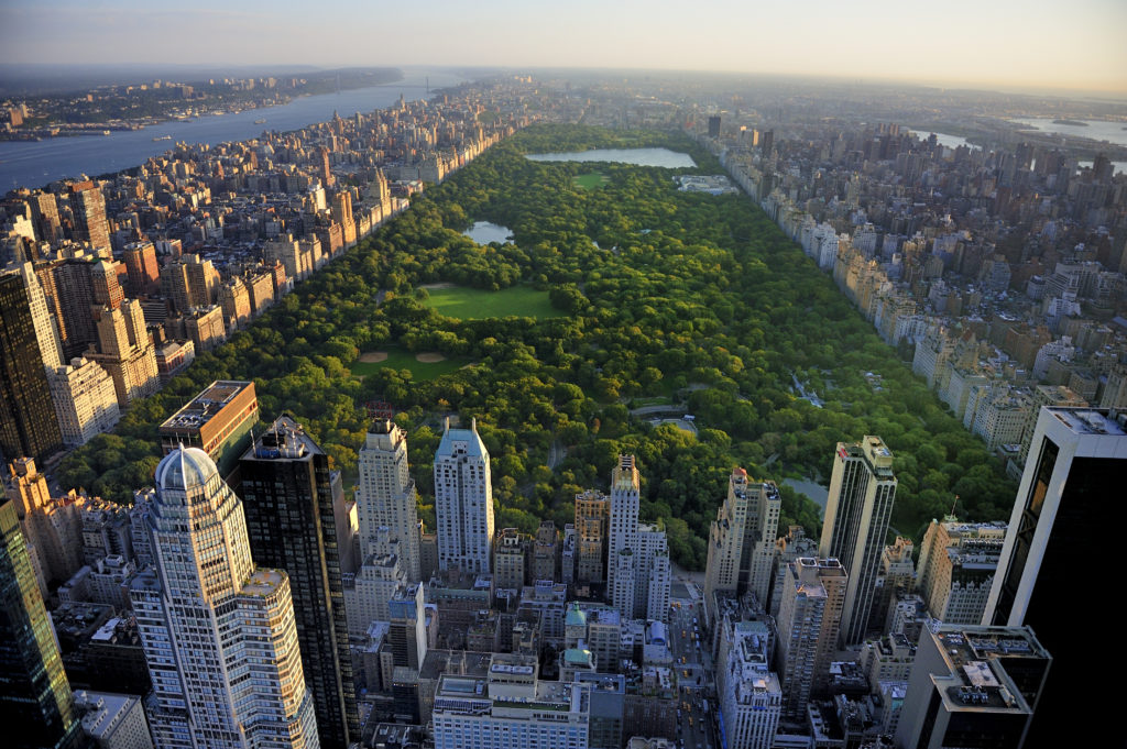 Parks in NYC: The Top 5 Parks for Visitors