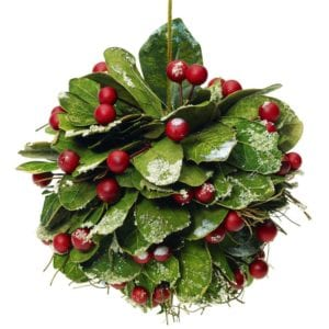 The Mistletoe is a popular item for every C