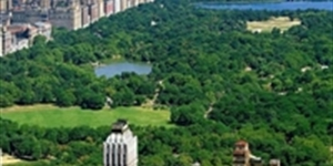 Parking in NYC: the Top 5 Parks for Visitors