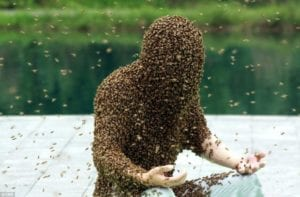 Ruan Lianming is one man who has no problem holding this weird world record for the man covered in Most Bees