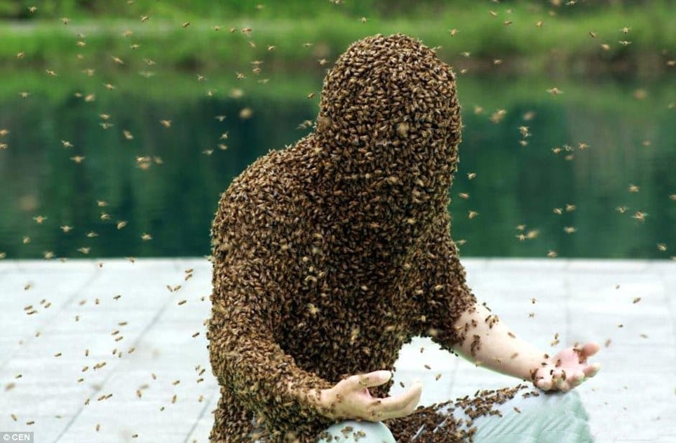 Getting covered with bees is one of our weird world records