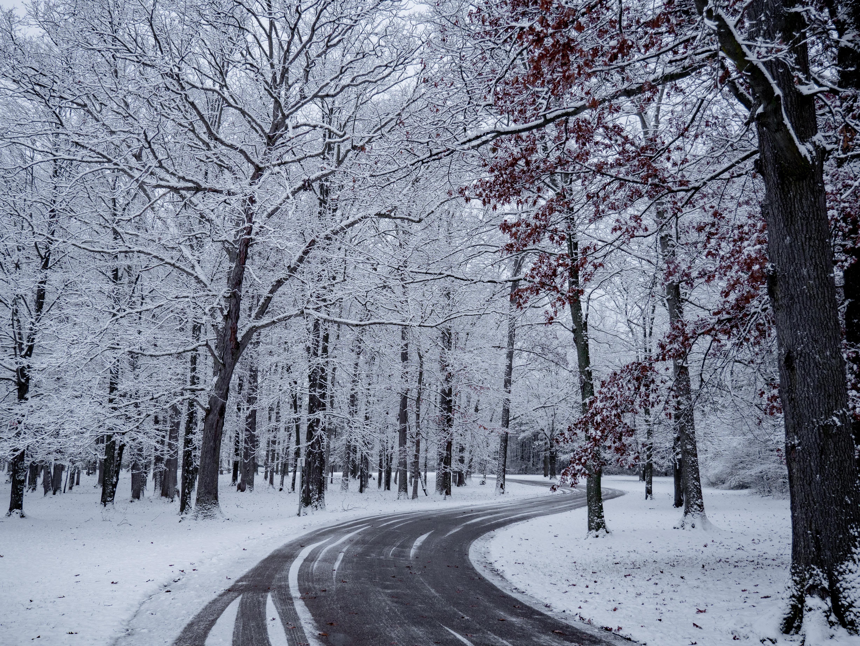 ice storm natural phenomenon