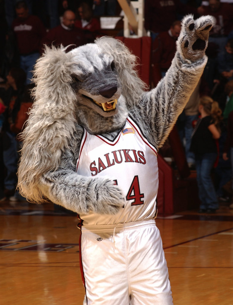 The Saluki is the mascot of the SIU Salukis and it is one of the most terrifying mascot is sports history