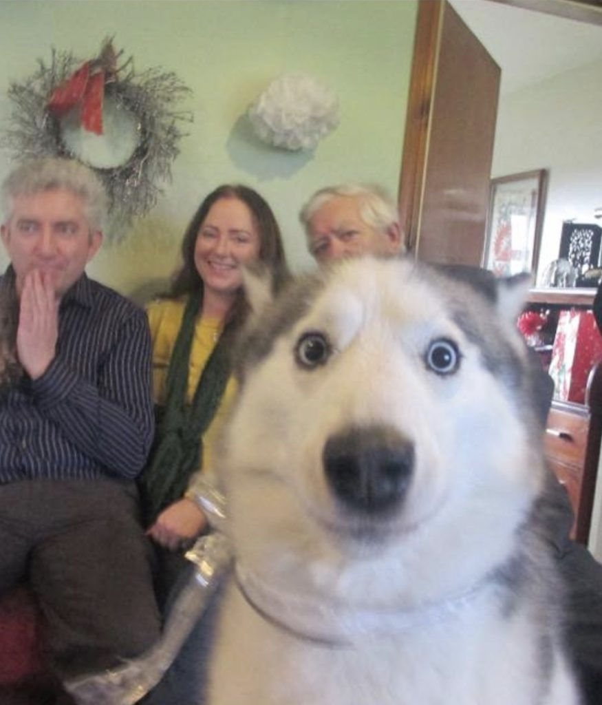 Definitely one of the best photobombs ever