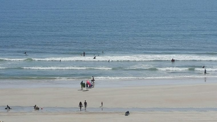 Shark attacks ar a thing on the beaches of Volusia. It is one of the deadliest beaches to visit