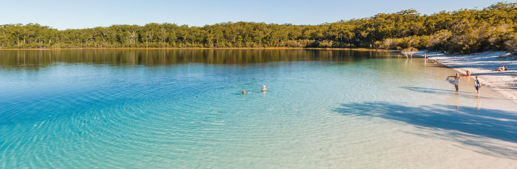 Fraser Island Beach is one of the deadliest beaches in the world with a plethora of dangerous creatures