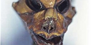 "Close Encounter: 5 Questions About the Atacama ""Alien"""