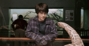 Harry Potter facing a snake - made up languages