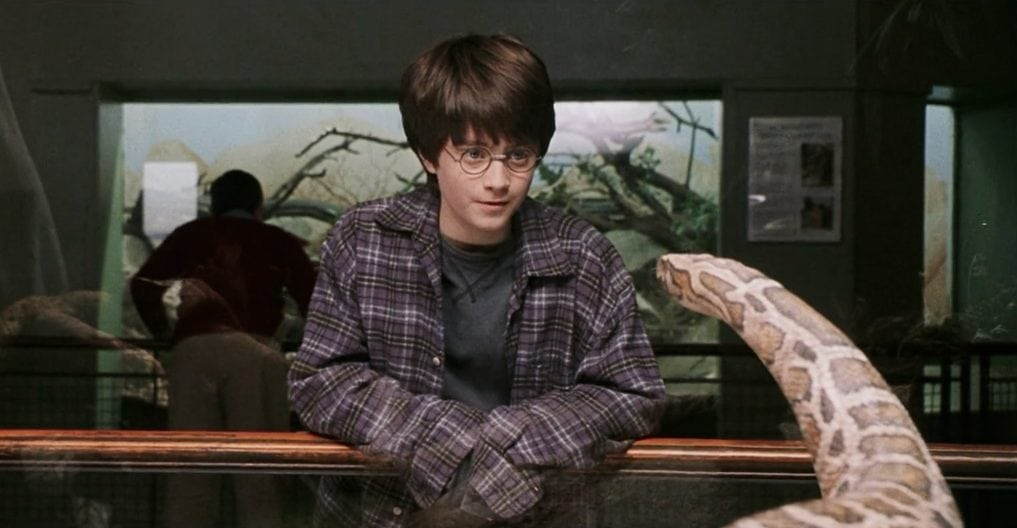 Harry Potter facing a snake - made-up languages