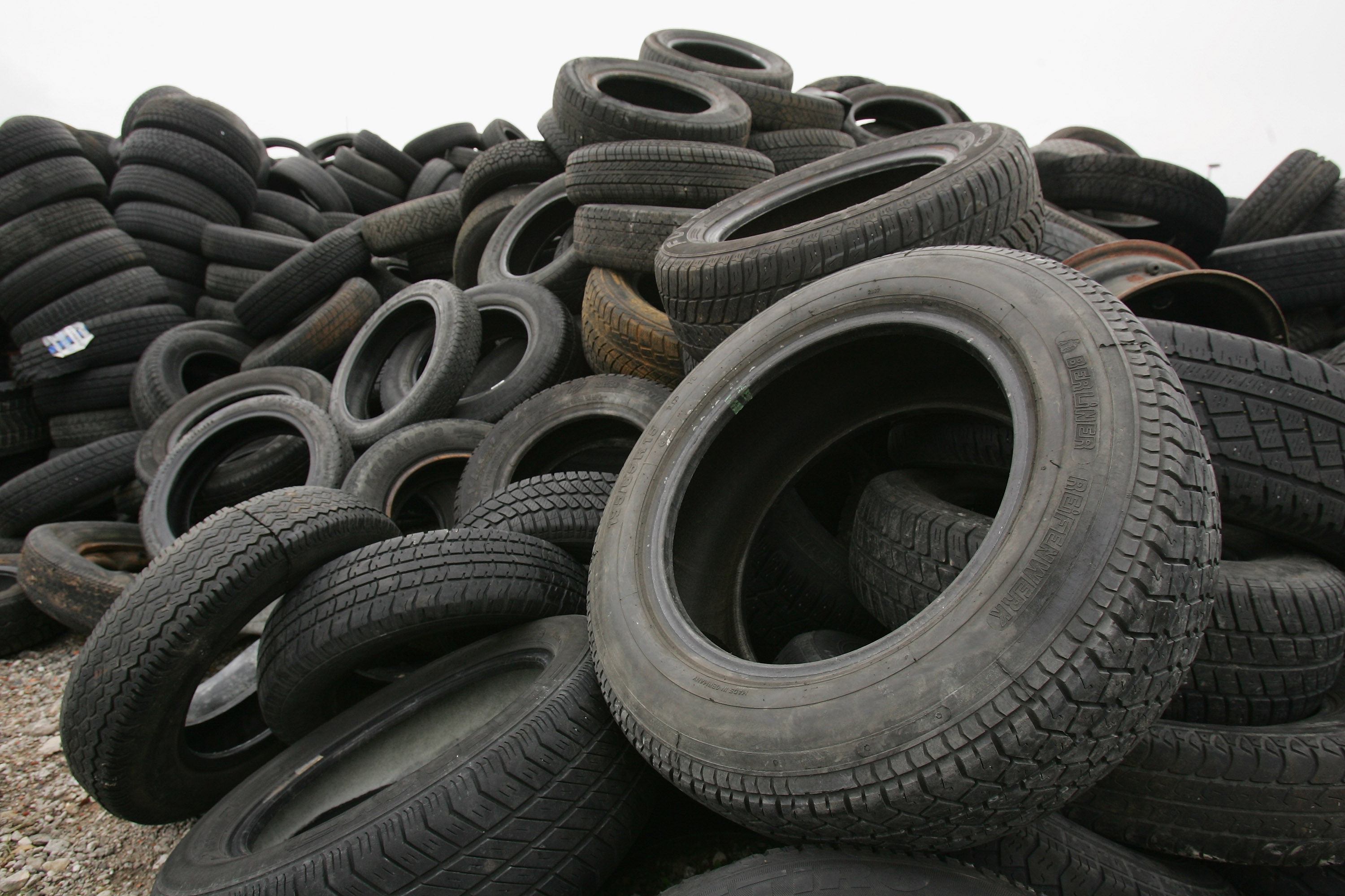 Tires are one of the strangest things found in a Sharks Stomach
