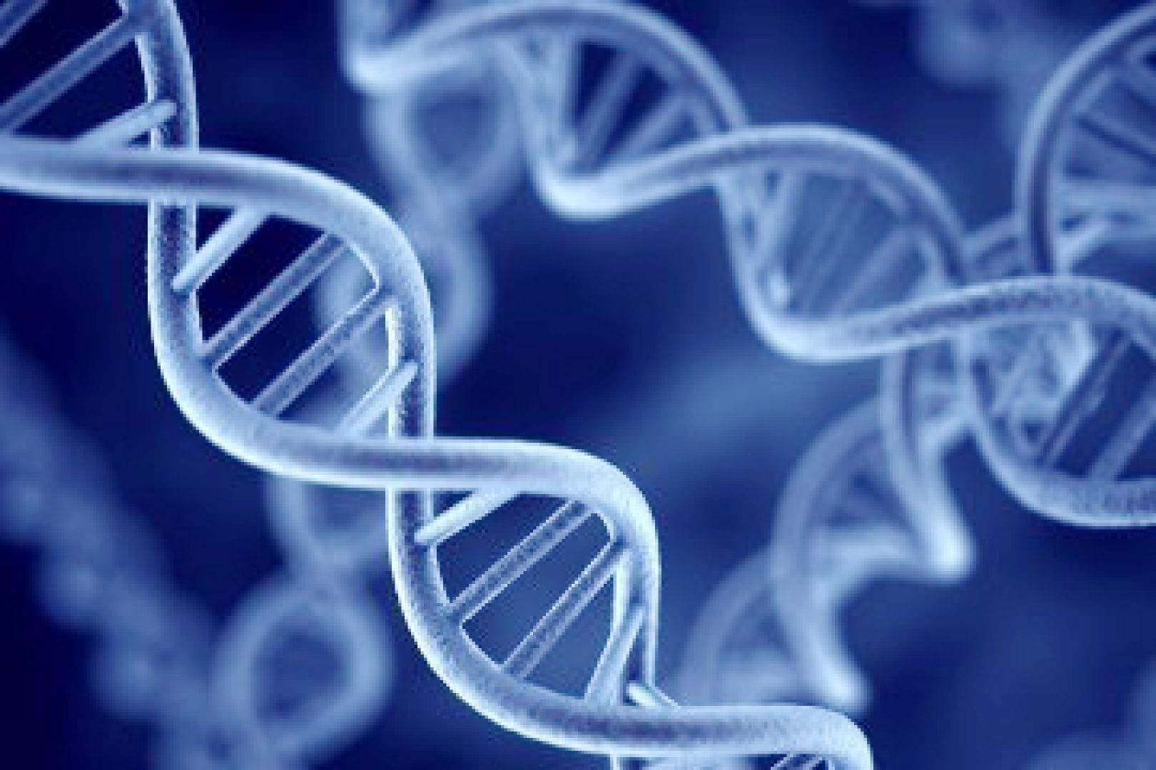 Cloning of humans might someday be possible