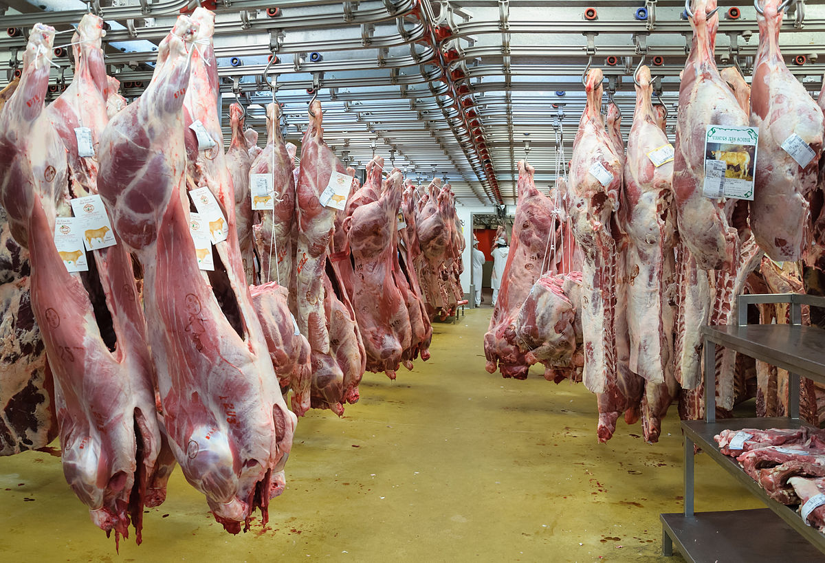 Meat without slaughtering animals