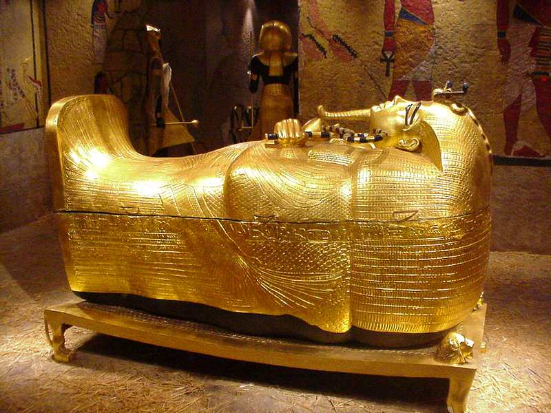 gold facts coffin