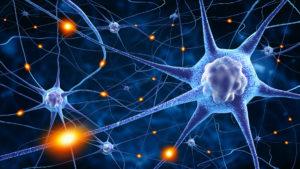 Brain Nerve Seizure