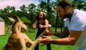 Matt and Jeff Hardy, and Roo