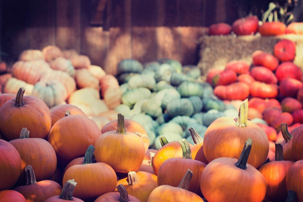 Top 5 Pumpkin Recipes That Are Sure To Be On Your Fall Cooking Rotation