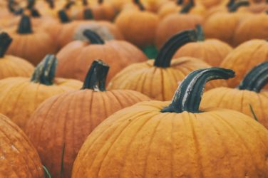 Pumpkin Spice Goodies Featured Image