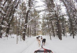 ski-holiday-mountain-sports