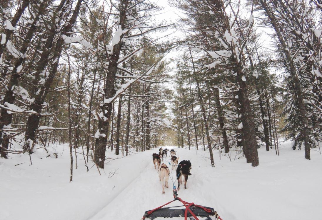 ski holiday mountain sports