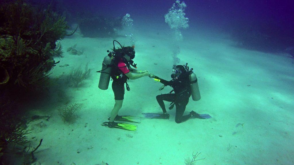 underwater propsal