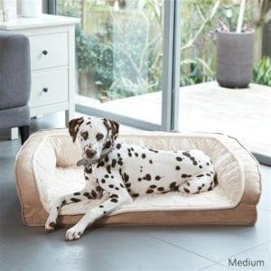 Unique Pet Furniture