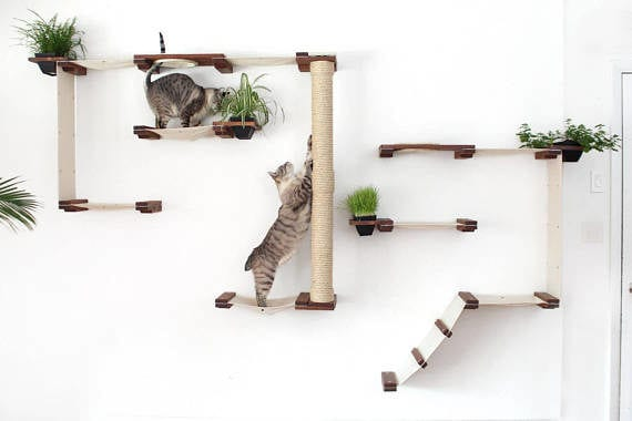 Unique Pet Furniture