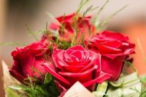 Valentine's Day Quiz: Red Roses Symbolize Love