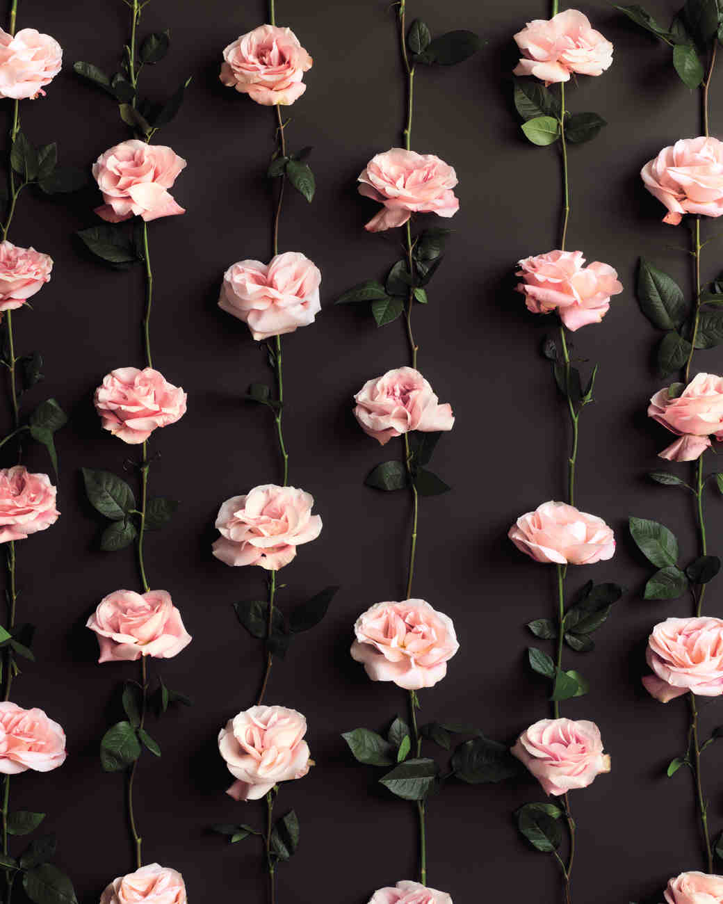 wedding-backdrops-48