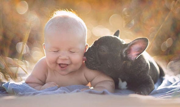 20 Pics of Babies and Puppies That Will Melt Your Heart