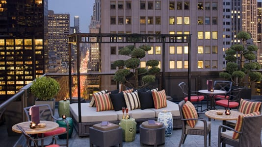 Best Rooftop Bars in NYC - Salon de Ning