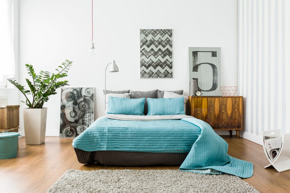 Want To Update Your Bedroom  Decoration on a Budget? Check Out These Ideas for Under $20