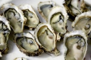 Cheaper in NYC: Oysters