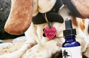 CBD Products Irie Pet Blend