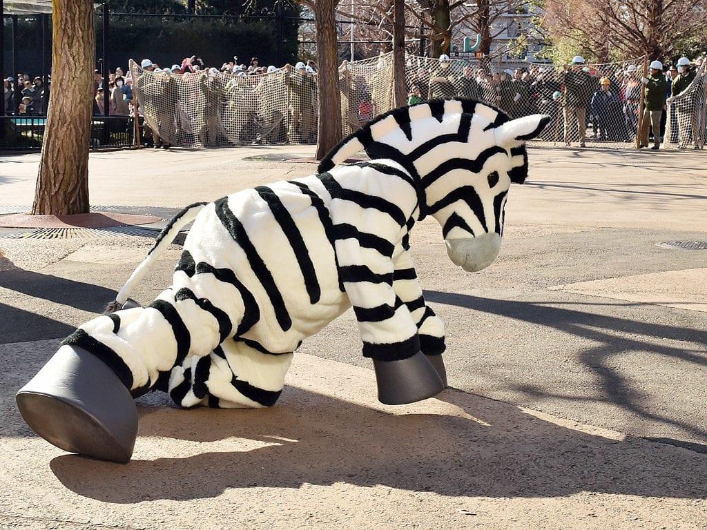 Tokyo Japan- Ueno-Zoo-Drupal