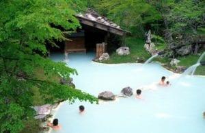 Japanese Hot Springs Shirahone Onsen