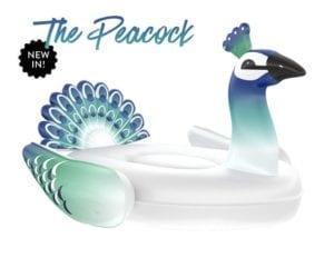 pool floats - peacock