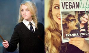 Harry Potter cast now Evanna Lynch