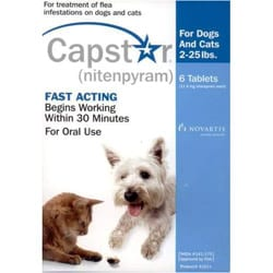 how to get rid of fleas capstar