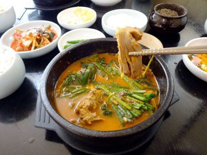 korean interesting food dog soup