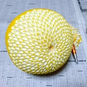 lemon fruit carving idea