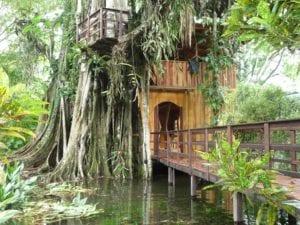 treehouse hotel topos treehouse