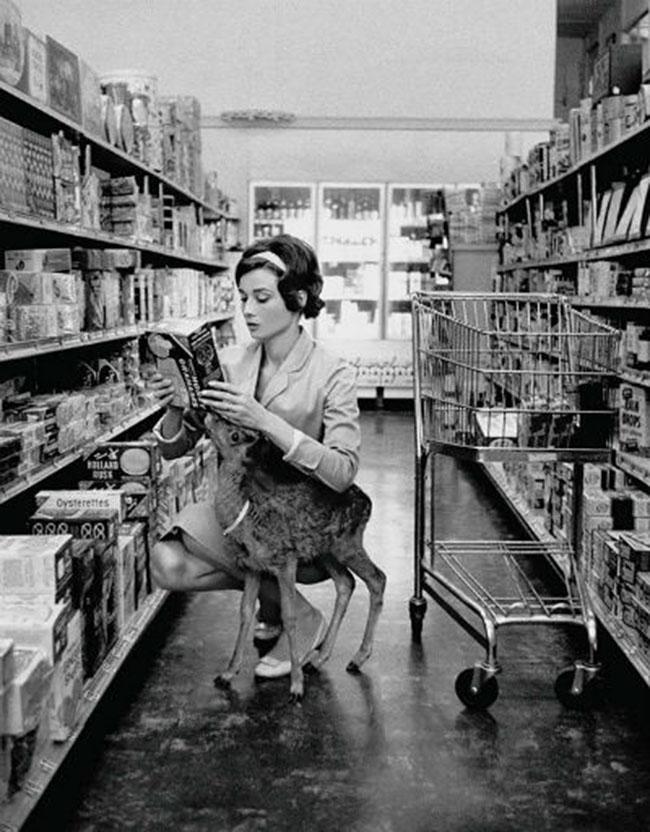 Audrey Hepburn with a deer - vintage photos